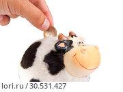Купить «Cow moneybox», фото № 30531427, снято 6 июля 2010 г. (c) Tryapitsyn Sergiy / Фотобанк Лори