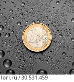 One EURO. Стоковое фото, фотограф Tryapitsyn Sergiy / Фотобанк Лори