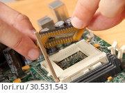 Купить «Installing computer processor», фото № 30531543, снято 29 июля 2010 г. (c) Tryapitsyn Sergiy / Фотобанк Лори