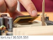 Купить «Installing computer processor», фото № 30531551, снято 29 июля 2010 г. (c) Tryapitsyn Sergiy / Фотобанк Лори