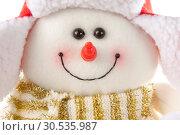 Купить «Snowman in hat and scarf», фото № 30535987, снято 11 ноября 2010 г. (c) Tryapitsyn Sergiy / Фотобанк Лори