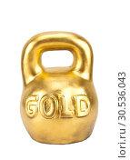 Купить «Big heavy weight of gold», фото № 30536043, снято 13 января 2011 г. (c) Tryapitsyn Sergiy / Фотобанк Лори