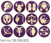 Купить «Set of Zodiac symbols», фото № 30536823, снято 6 апреля 2011 г. (c) Tryapitsyn Sergiy / Фотобанк Лори