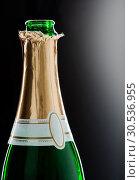 Champaign bottle. Стоковое фото, фотограф Tryapitsyn Sergiy / Фотобанк Лори