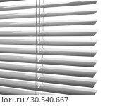 Купить «Window blinds», фото № 30540667, снято 25 октября 2013 г. (c) Tryapitsyn Sergiy / Фотобанк Лори