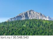 Купить «Wonderful view to mountains in Montenegro», фото № 30548543, снято 12 июня 2014 г. (c) Tryapitsyn Sergiy / Фотобанк Лори