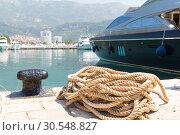 Купить «Rope and bollard on pier», фото № 30548827, снято 10 июня 2014 г. (c) Tryapitsyn Sergiy / Фотобанк Лори