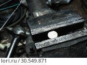 Купить «Metal bench vice with 1 euro coin», фото № 30549871, снято 6 ноября 2014 г. (c) Tryapitsyn Sergiy / Фотобанк Лори