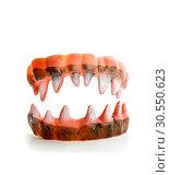 Купить «Monster's ugly sharp teeth», фото № 30550623, снято 18 декабря 2014 г. (c) Tryapitsyn Sergiy / Фотобанк Лори