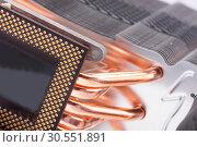 Купить «Computer processor cooler or radiator», фото № 30551891, снято 14 июня 2011 г. (c) Tryapitsyn Sergiy / Фотобанк Лори