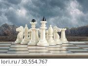Купить «White chess team», фото № 30554767, снято 10 марта 2016 г. (c) Tryapitsyn Sergiy / Фотобанк Лори