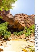 Купить «Virgin nature paniramic view of Zion National Park», фото № 30556767, снято 23 июня 2016 г. (c) Tryapitsyn Sergiy / Фотобанк Лори