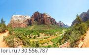 Купить «Virgin nature paniramic view of Zion National Park», фото № 30556787, снято 23 июня 2016 г. (c) Tryapitsyn Sergiy / Фотобанк Лори