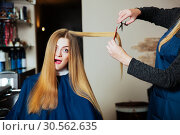 Hairdressing with scissors and comb. Стоковое фото, фотограф Tryapitsyn Sergiy / Фотобанк Лори