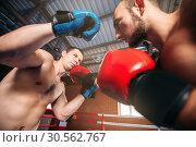 Купить «Boxer sents his opponent to the knockout.», фото № 30562767, снято 7 октября 2016 г. (c) Tryapitsyn Sergiy / Фотобанк Лори