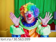 Купить «Clown with queer expression on his face.», фото № 30563099, снято 30 октября 2016 г. (c) Tryapitsyn Sergiy / Фотобанк Лори