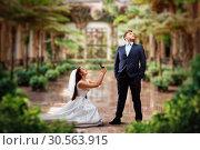 Bride makes an offer in green garden. Стоковое фото, фотограф Tryapitsyn Sergiy / Фотобанк Лори