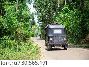 Купить «Tuk tuk on road of Sri Lanka, back view», фото № 30565191, снято 21 февраля 2017 г. (c) Tryapitsyn Sergiy / Фотобанк Лори