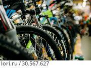 Купить «Bicycle shop, rows of new bikes, cycle sport store», фото № 30567627, снято 26 июля 2017 г. (c) Tryapitsyn Sergiy / Фотобанк Лори