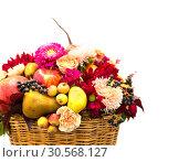 Купить «Ripe fruits and flowers composition in a basket», фото № 30568127, снято 13 сентября 2017 г. (c) Tryapitsyn Sergiy / Фотобанк Лори
