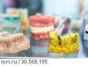 Купить «Medicine equipment, prosthetic dentistry, dentures», фото № 30568195, снято 14 сентября 2017 г. (c) Tryapitsyn Sergiy / Фотобанк Лори