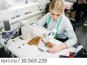 Купить «Needlewoman sews fabrics on a sewing machine», фото № 30569239, снято 20 ноября 2017 г. (c) Tryapitsyn Sergiy / Фотобанк Лори
