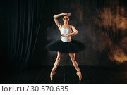 Elegance ballerina in action on theatrical stage. Стоковое фото, фотограф Tryapitsyn Sergiy / Фотобанк Лори