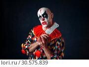 Купить «Mad bloody clown with meat cleaver, circus horror», фото № 30575839, снято 7 декабря 2018 г. (c) Tryapitsyn Sergiy / Фотобанк Лори