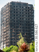 Scene at Grenfell Tower the day after the fire in West London. (2017 год). Редакционное фото, фотограф Wheatley / WENN / age Fotostock / Фотобанк Лори