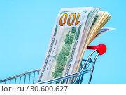 Купить «100 dollars note in a tiny basket», фото № 30600627, снято 18 апреля 2019 г. (c) Pavel Biryukov / Фотобанк Лори