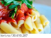 Купить «Macaroni pasta», фото № 30610287, снято 6 июля 2013 г. (c) easy Fotostock / Фотобанк Лори