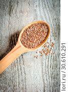 Купить «Flax seed (linseed)», фото № 30610291, снято 28 июля 2013 г. (c) easy Fotostock / Фотобанк Лори