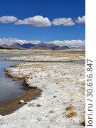Купить «Великие озера Тибета, озеро Рулдан (Нак) на Тибетском нагорье летом. Китай», фото № 30616847, снято 11 июня 2018 г. (c) Овчинникова Ирина / Фотобанк Лори