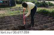 Купить «Young woman farmer working with hoe in vegetable garden, hoeing the soil», видеоролик № 30617059, снято 26 февраля 2019 г. (c) Яков Филимонов / Фотобанк Лори