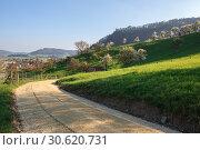 Купить «Вид на дорогу, петляющую через цветующие сады коммуны Филлиген, кантон Аргау, Швейцария», фото № 30620731, снято 15 апреля 2019 г. (c) Bala-Kate / Фотобанк Лори