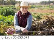 Купить «Woman posing at organic plantation», фото № 30653071, снято 21 февраля 2019 г. (c) Яков Филимонов / Фотобанк Лори