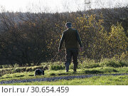 Walking up game with a springer spaniel. Стоковое фото, агентство Ingram Publishing / Фотобанк Лори