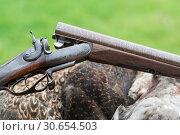Купить «Damascus barrel Purdey side by side shotgun», фото № 30654503, снято 30 июля 2017 г. (c) Ingram Publishing / Фотобанк Лори
