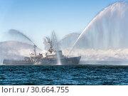 Купить «Пожарно-спасательное судно «Спасатель» ПЖС-219 аварийно-спасательного отряда Тихоокеанского флота Войск и сил на Северо-востоке России», фото № 30664755, снято 27 апреля 2019 г. (c) А. А. Пирагис / Фотобанк Лори
