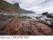 Купить «Dramatic coastline landscape in Taganana beach, north Tenerife island, Canary islands, Spain.», фото № 30679155, снято 30 декабря 2018 г. (c) easy Fotostock / Фотобанк Лори