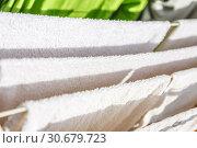 Купить «White and colored linen and towels to be dried on the clothesline», фото № 30679723, снято 2 октября 2018 г. (c) Tetiana Chugunova / Фотобанк Лори