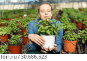 Купить «Female farmer posing in glasshouse», фото № 30686523, снято 3 октября 2018 г. (c) Яков Филимонов / Фотобанк Лори