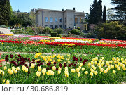 Купить «Никитский ботанический сад. Ялта. Крым», фото № 30686819, снято 27 апреля 2019 г. (c) Игорь Архипов / Фотобанк Лори