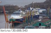 Купить «Круизный лайнер Celebrity Millennium в морском порту», видеоролик № 30688543, снято 2 мая 2019 г. (c) А. А. Пирагис / Фотобанк Лори