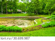 Купить «Landscaping and pond with flowerbeds in the Alexander park - ornamental public park in St Petersburg, Russia», фото № 30699987, снято 19 июня 2015 г. (c) Зезелина Марина / Фотобанк Лори