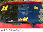 Желтые кленовые листья и наклейка с восклицательным знаком на заднем стекле автомобиля. Стоковое фото, фотограф Ирина Борсученко / Фотобанк Лори