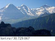 Bergpanorama der Schweizer Alpen mit den Gipfeln Eiger, Mönch und Jungfrau bei Grindelwald, Berner Oberland, Schweiz / Panorama view of the Swiss alps... Стоковое фото, фотограф Zoonar.com/G Fischer / age Fotostock / Фотобанк Лори
