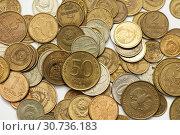 Купить «Советские, металлические деньги разных лет. Крупный план», эксклюзивное фото № 30736183, снято 15 апреля 2019 г. (c) Игорь Низов / Фотобанк Лори