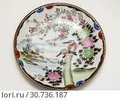 Купить «Пустая тарелка с птицами», эксклюзивное фото № 30736187, снято 1 мая 2019 г. (c) Игорь Низов / Фотобанк Лори