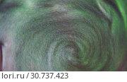 Купить «Круговорот серо-зеленой массы», видеоролик № 30737423, снято 11 мая 2019 г. (c) Элина Гаревская / Фотобанк Лори